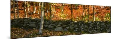 Old Rock Wall-Brenda Petrella Photography LLC-Mounted Giclee Print