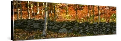 Old Rock Wall-Brenda Petrella Photography LLC-Stretched Canvas Print