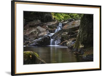 Peace On The Mad River-Brenda Petrella Photography LLC-Framed Giclee Print