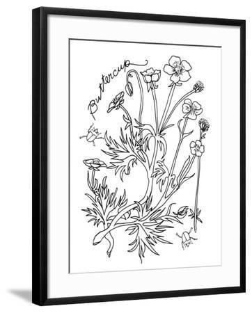 Botanical Buttercup BW for Coloring-Cyndi Lou-Framed Giclee Print