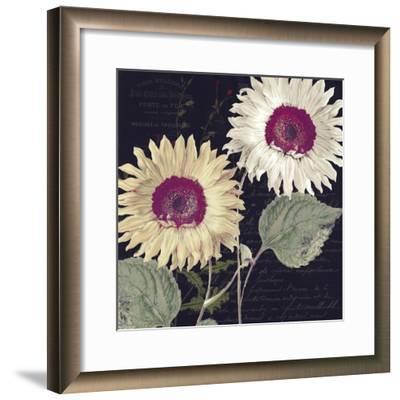 Midnight Sun I-Color Bakery-Framed Giclee Print
