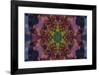 Fractal Mandala 1-Delyth Angharad-Framed Giclee Print