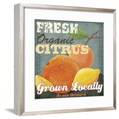 Citrus-Fiona Stokes-Gilbert-Framed Giclee Print