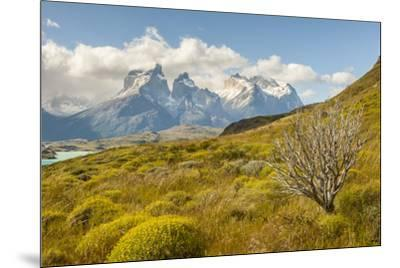 Chile, Patagonia. Lake Pehoe and The Horns mountains.-Jaynes Gallery-Mounted Premium Photographic Print