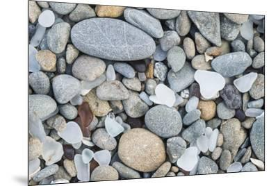 USA, California, Ft. Bragg, Close-up of Glass Beach Pebbles-Rob Tilley-Mounted Premium Photographic Print