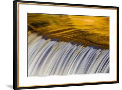 Golden Middle Branch of the Ontonagon River, Bond Falls Scenic Site, Michigan USA-Chuck Haney-Framed Premium Photographic Print