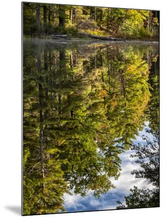 USA, New Hampshire, White Mountains, Reflections in Red Eagle Pond-Ann Collins-Mounted Photographic Print