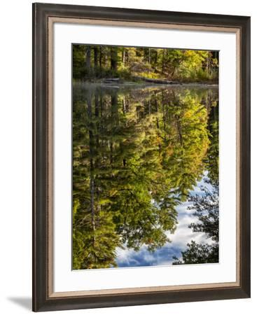 USA, New Hampshire, White Mountains, Reflections in Red Eagle Pond-Ann Collins-Framed Photographic Print