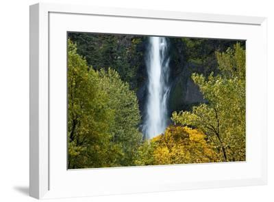 Autumn, Multnomah Falls, Columbia Gorge, Oregon, USA-Michel Hersen-Framed Premium Photographic Print