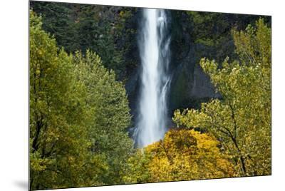 Autumn, Multnomah Falls, Columbia Gorge, Oregon, USA-Michel Hersen-Mounted Premium Photographic Print