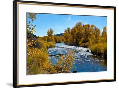 USA, New Mexico, Fall along Rio Chama River.-Bernard Friel-Framed Premium Photographic Print