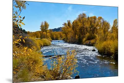 USA, New Mexico, Fall along Rio Chama River.-Bernard Friel-Mounted Premium Photographic Print