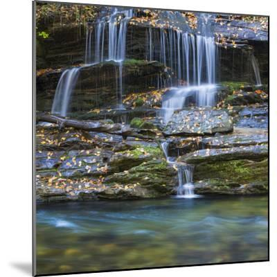 USA, North Carolina, Great Smoky Mountains. Scenic of Tom Branch Falls.-Jaynes Gallery-Mounted Photographic Print