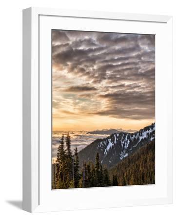 USA, Washington State, Olympic National Park, View towards Hurricane Ridge-Ann Collins-Framed Photographic Print