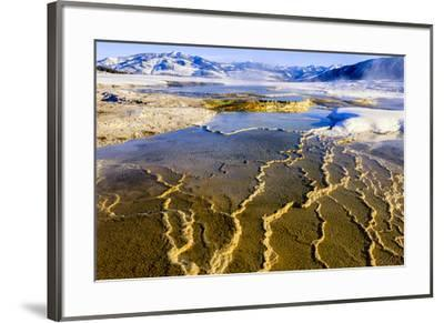 Chemical Sediments. Yellowstone National Park, Wyoming.-Tom Norring-Framed Premium Photographic Print