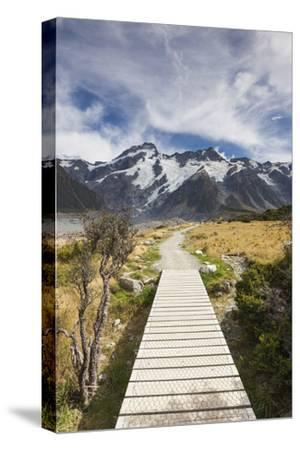 New Zealand, South Island, Canterbury, Trail through Aoraki-Mt. Cook National Park-Walter Bibikow-Stretched Canvas Print