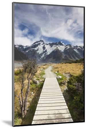 New Zealand, South Island, Canterbury, Trail through Aoraki-Mt. Cook National Park-Walter Bibikow-Mounted Photographic Print