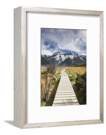 New Zealand, South Island, Canterbury, Trail through Aoraki-Mt. Cook National Park-Walter Bibikow-Framed Photographic Print