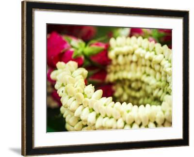 Thailand, Bangkok Street Flower Market. Flowers ready for display.-Terry Eggers-Framed Photographic Print