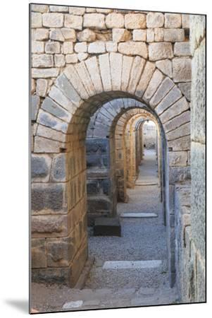 Turkey, Izmir, Bergama, Pergamon. Arches of the sanctuary of Trajan.-Emily Wilson-Mounted Premium Photographic Print