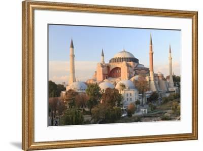 Turkey, Istanbul. Sultan Ahmet Mosque, Rooftop view.-Emily Wilson-Framed Premium Photographic Print