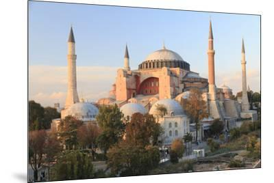 Turkey, Istanbul. Sultan Ahmet Mosque, Rooftop view.-Emily Wilson-Mounted Premium Photographic Print