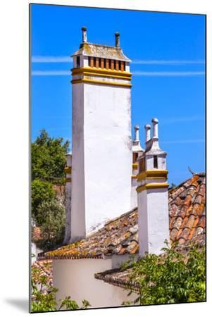 Towers of building in a Medieval Town, Obidos, Portugal-William Perry-Mounted Premium Photographic Print