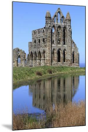 England, North Yorkshire, Whitby. Ruins of Whitby Abbey-Emily Wilson-Mounted Premium Photographic Print