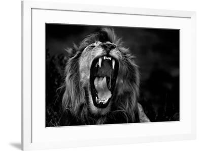 Untitled-Giuseppe D'Amico-Framed Photographic Print