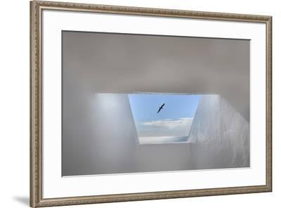 Hope-Anita Palceska-Framed Photographic Print