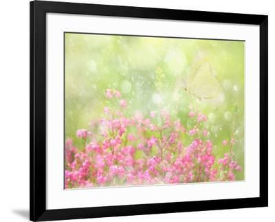 It's a Beautiful Day-Delphine Devos-Framed Photographic Print