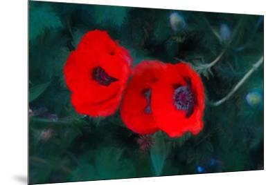 Three Poppies of Scarlet-Helen White-Mounted Giclee Print