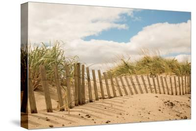 Beach Dunes I--Stretched Canvas Print