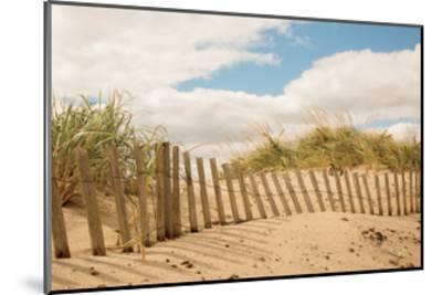 Beach Dunes I--Mounted Art Print