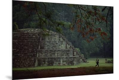 Mayan pyramidal tomb showing silhouetted Pancho the monkey who lives at the site.-Kenneth Garrett-Mounted Photographic Print