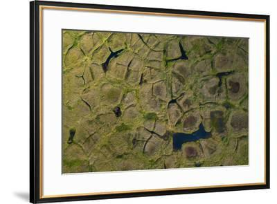 Natural polygonal shapes appear across the tundra landscape as a result of permafrost melt-Jeffrey Kerby-Framed Photographic Print