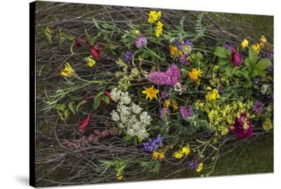 Flowers from a pagan wedding at a Neolithic henge monument with a stone circle.-Jim Richardson-Stretched Canvas Print