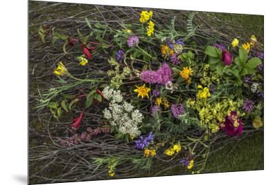 Flowers from a pagan wedding at a Neolithic henge monument with a stone circle.-Jim Richardson-Mounted Photographic Print