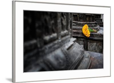 A bouquet of yellow flowers at the stone columns of Swayambhunath.-Martin Edstrom-Framed Photographic Print