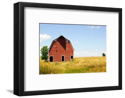 Abandoned Farm in Nebraska--Framed Premium Photographic Print