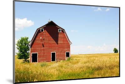 Abandoned Farm in Nebraska--Mounted Premium Photographic Print