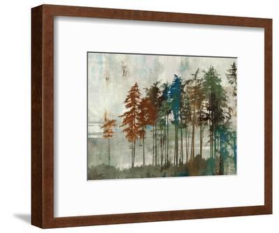Aspen-Andrew Michaels-Framed Art Print