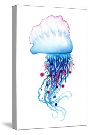 Man o'War Jellyfish-Sam Nagel-Stretched Canvas Print