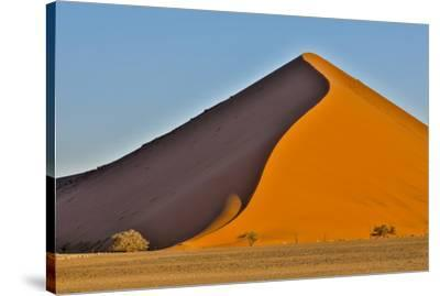 Africa, Namibia, Sossusvlei Dune in the Afternoon Light-Hollice Looney-Stretched Canvas Print