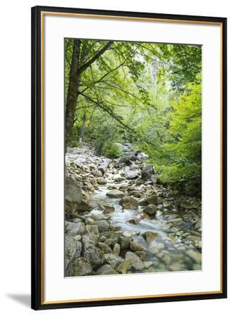 Shannon Falls Provincial Park near Squamish, British Columbia, Canada-Stuart Westmorland-Framed Photographic Print