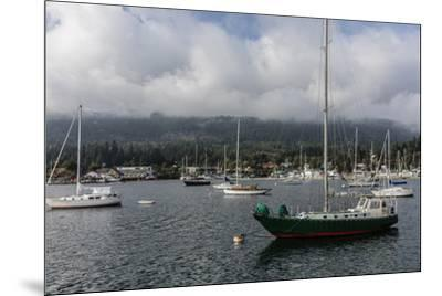 Ganges Harbor on Salt Spring Island in British Columbia, Canada-Chuck Haney-Mounted Photographic Print