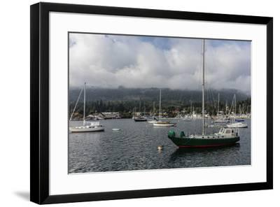 Ganges Harbor on Salt Spring Island in British Columbia, Canada-Chuck Haney-Framed Photographic Print