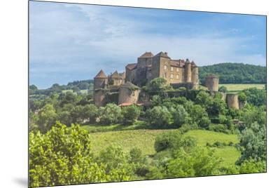 Berze Castle, Burgundy, France-Jim Engelbrecht-Mounted Photographic Print