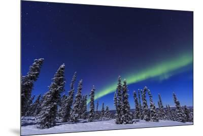 Aurora borealis, Northern Lights near Fairbanks, Alaska-Stuart Westmorland-Mounted Photographic Print