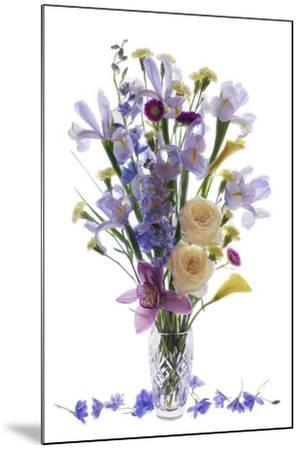 Usa, Florida, Celebration, A Vase of Blooming Flowers-Hollice Looney-Mounted Photographic Print